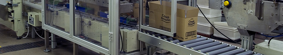 Automatic case packing on production line with Casepacker from Quin Systems.